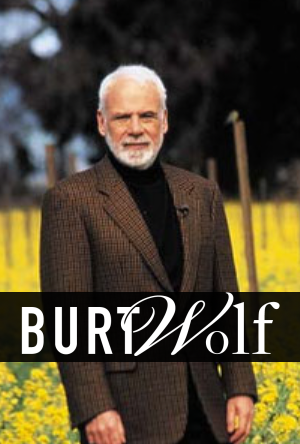 Burt Wolf's Travels & Traditions