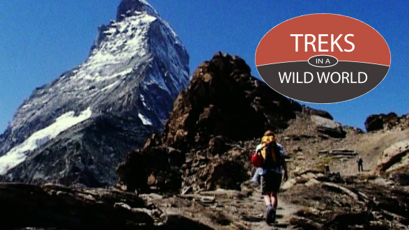 Treks In A Wild World