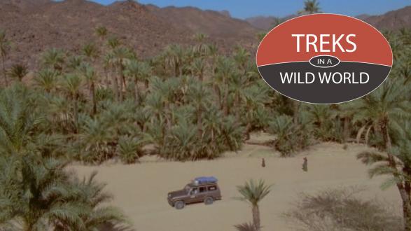 Treks In A Wild World